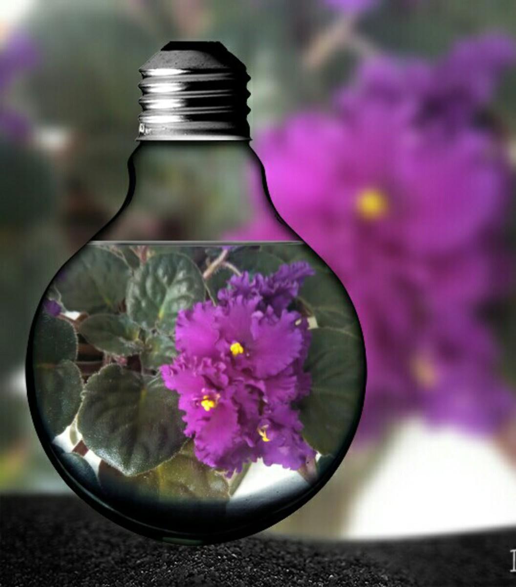 online nové pujcky pred výplatou uherský ostroh