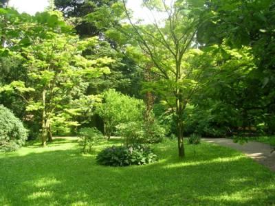 Foto dne: Bl Lhota - Arboretum - alahlia.info