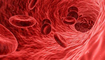 Odhalí krevní testy, kdy umřeme? Ne, nicméně z krve toho poznáme dost, říká biochemik a hematolog Jaroslav Racek